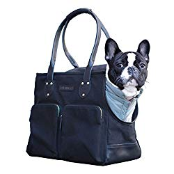 designer dog bag