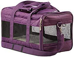 dog carry on bag