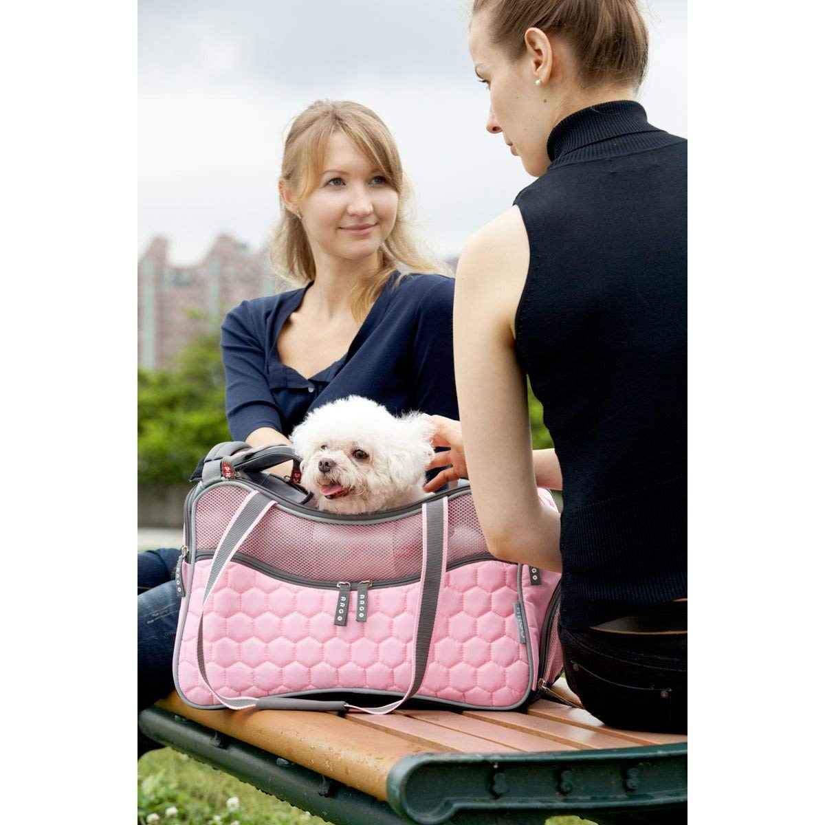 designer dog purse